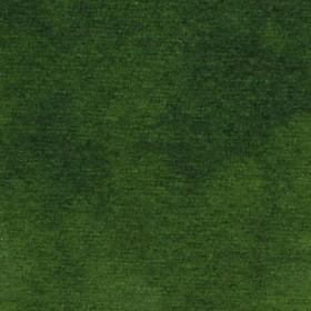 Dappled Moss
